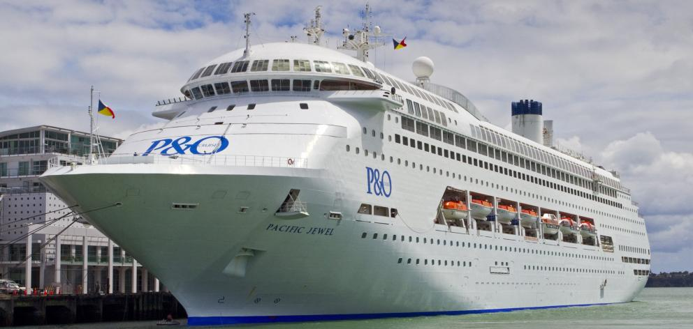 Cruise Ship Slaughter Seabirds Die In Boxes Otago Daily