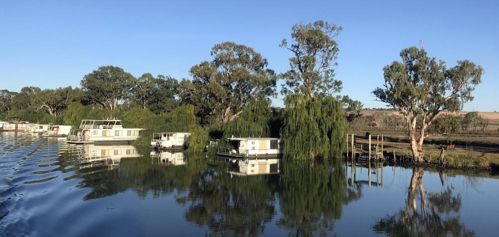 Houseboats tied up on a quiet stretch of the river.