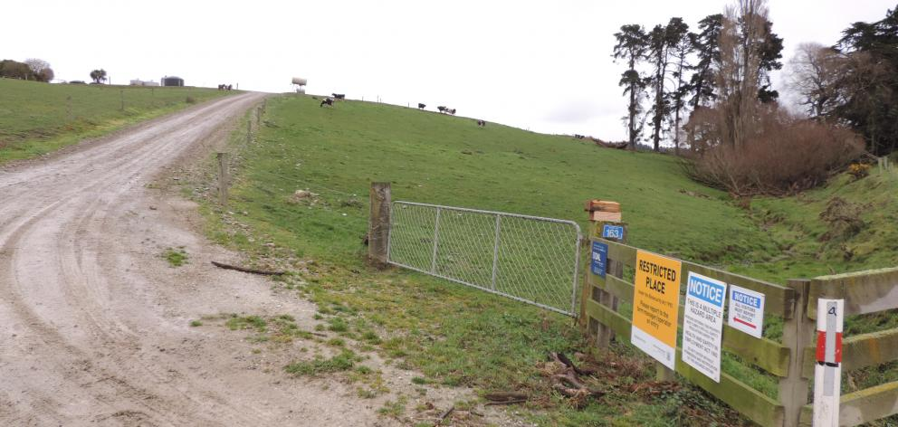 This farm at Dog Kennel Rd, near Waimate, was the second Van Leeuwen Dairy Group property where Mycoplasma bovis was confirmed, on July 31. Photo: Sally Brooker