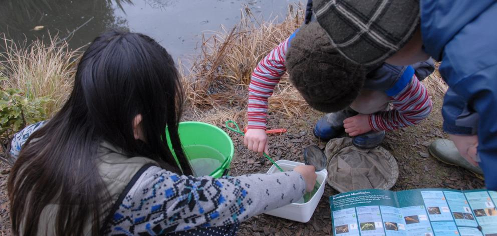 Children examine the invertebrate life in the eel pond. Photos: Yvonne Sommer