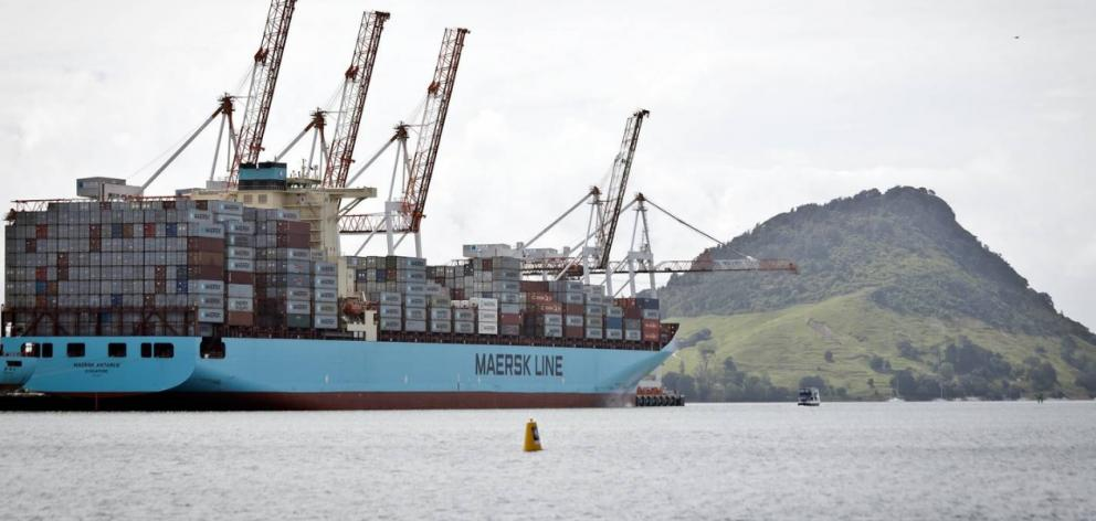 The Maersk Antares arrived in Tauranga from Chile last year with 46kg of cocaine hidden on board....
