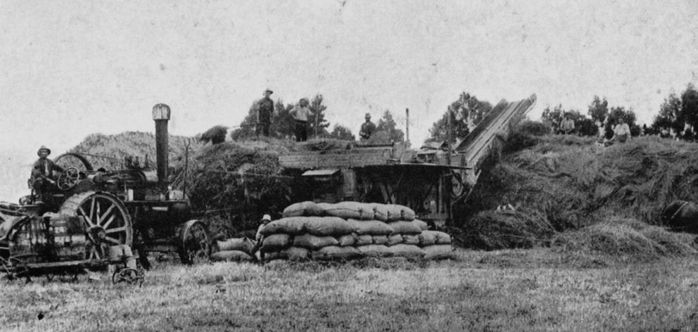Mr Hamilton's threshing plant at work on a farm at South Hillend, Southland. - Otago Witness, 10...