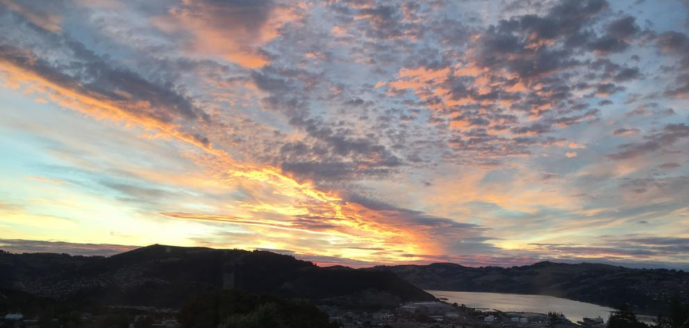 A jaw-dropping cirrus and altocumulus sunrise looking down Otago Harbour from Roslyn in 2016....