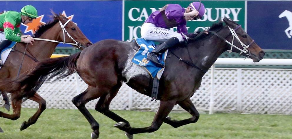 Jockey Ryan Elliot celebrates  Platinum Command's win over   She's Poppy in the $100,000  Winter...