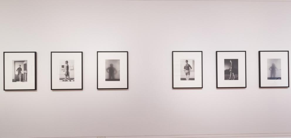 Mephitis Series 1-6, 1995 (installation view)