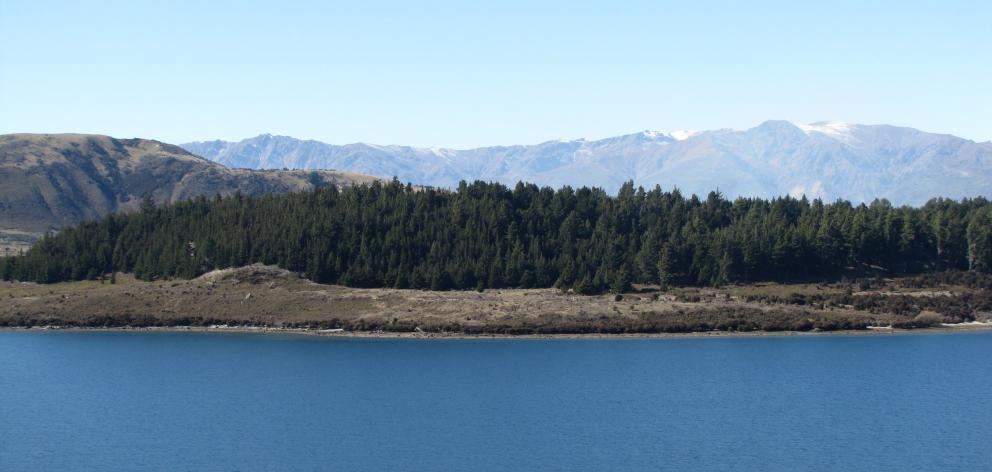 Crosshill Farm, on the northern side of the Clutha River, near the outlet from Lake Wanaka. Photo...