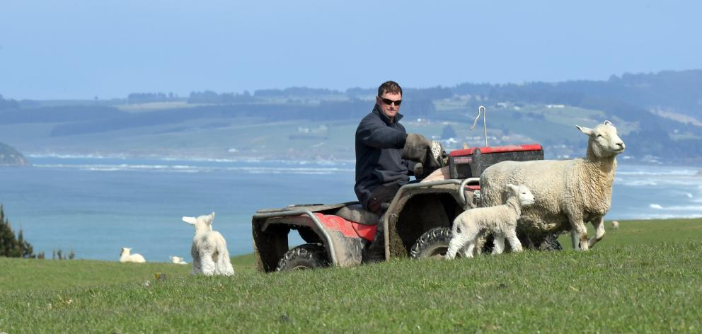 Pictured on his Kuri Bush farm, Peter McLeod is on alert. He looks for unusual vehicles and...