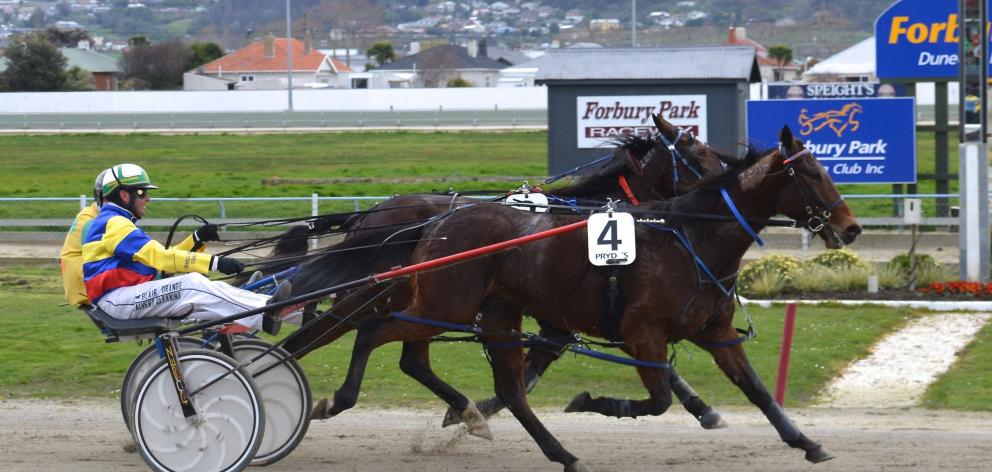 Rake and driver Blair Orange edge out Jamie's Bad Boy and Robbie Close to win race 2 at Forbury...