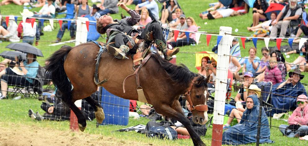 Will Gregory bucks his way past the crowd during the open bareback at the Outram rodeo last year....
