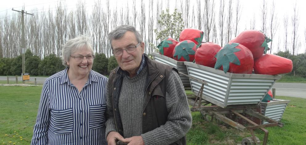 After decades of growing strawberries Jacky and Donald Butler are moving on. Photo: Chris Tobin