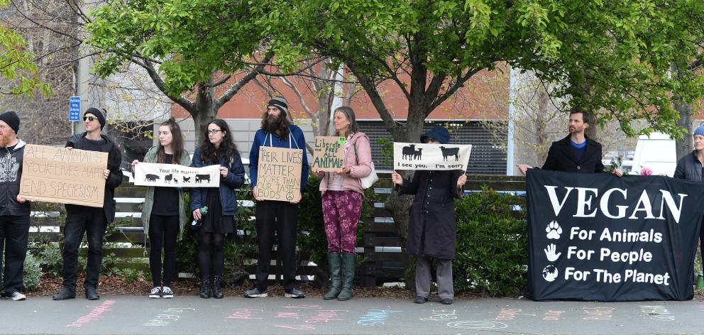 Vegan demonstrators have been out in Great King St/State Highway 1 on a weekly basis. Photo:...