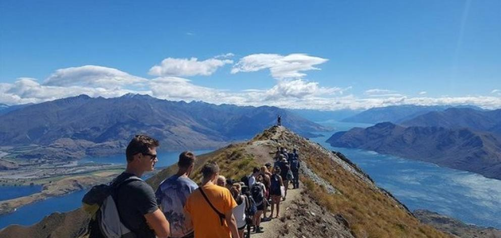 """This image. posted on Reddit and captioned the """"social media queue"""", shows a long line of hikers, all waiting to take the same picture on Roy's Peak last year. Photo: Reddit"""