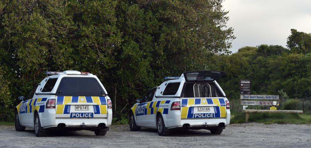 Police have converged on St Clair in  Dunedin seeking a naked man who was exposing himself in the...