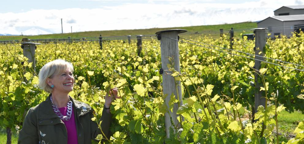 Janiene Bayliss, of Ata Mara vineyard, near Cromwell, is keen to see more school leavers made aware of the variety of careers available within the Central Otago wine industry. Photo: Supplied