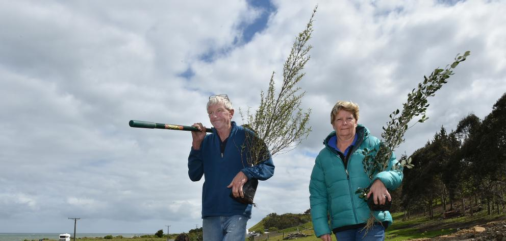 Kim and Diane Rapley say they cannot understand why someone would take more than 100 native plants from their Taieri Mouth Rd property in the dead of night. Photo: Gregor Richardson