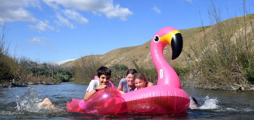 Floating down the Lindis River on a blow-up pink flamingo earlier this week are (from left) Jacob...