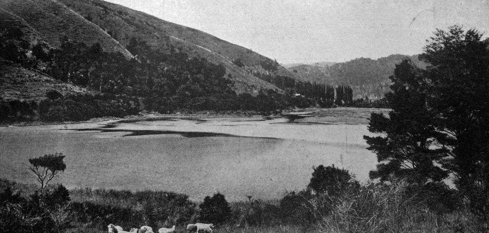 A picturesque bay, Banks Peninsula, Canterbury. - Otago Witness, 8.1.1919.