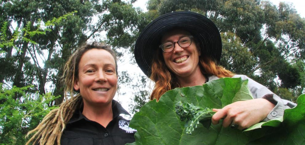 Nearly 40 50-year-old gum trees are set to be removed from the 18-month-old food forest at the...