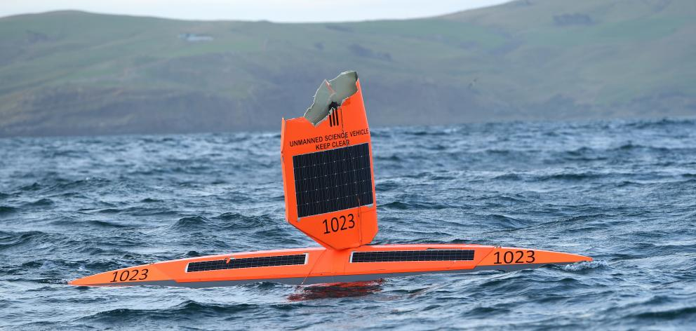 A damaged saildrone was retrieved off Taiaroa Head early yesterday. PHOTOS: STEPHEN JAQUIERY
