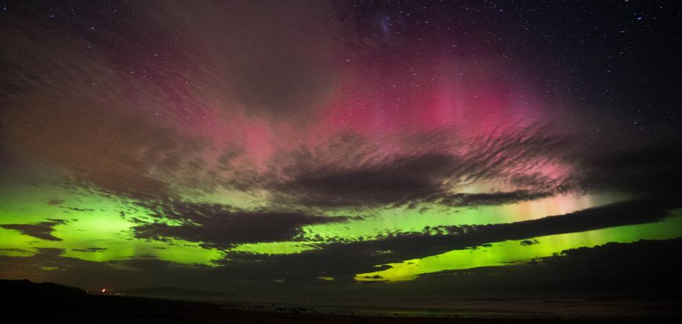 The Aurora Australis as seen from Stewart Island. Photo: Rebecca Wilson Jennings