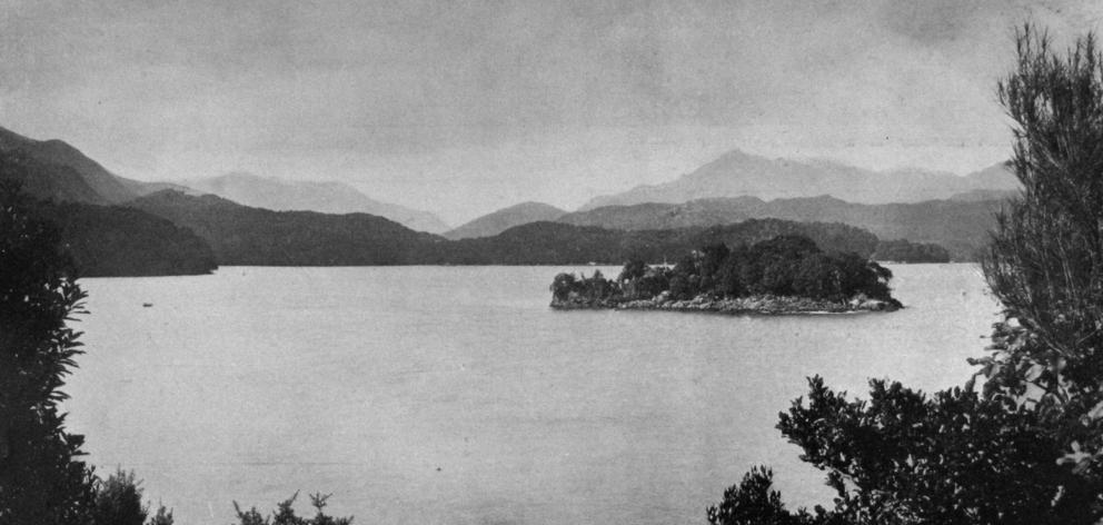 Cuttle Cove, Preservation Inlet, on the West Coast of Southland. - Otago Witness, 12.2.1919.