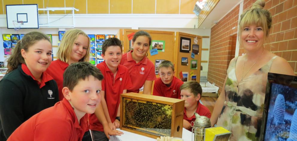 Pupils from Ranfurly's St John's School (from left) Jake Smith (11), Ella Gibson (12), Alivia Steele (11), Luke Shead (11), Bianca Jorgensen (12), Bradley Shaw (12) and David Hore (12) are fascinated with a case of bees, the story of honey and Patearoa Ho