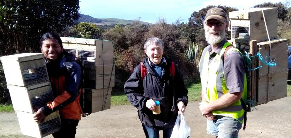 Tautuku Restoration Project volunteers (from left) Jorge Jimenez, Francie Beggs and Roy Johnstone prepare to carry small mammal traps into the Lenz Reserve near Papatowai, Catlins. Photo: Supplied