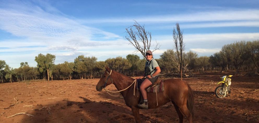 Central Otago vet Amy Watts has been mustering in Australia both on horseback and motorbike.  PHOTO: SUPPLIED