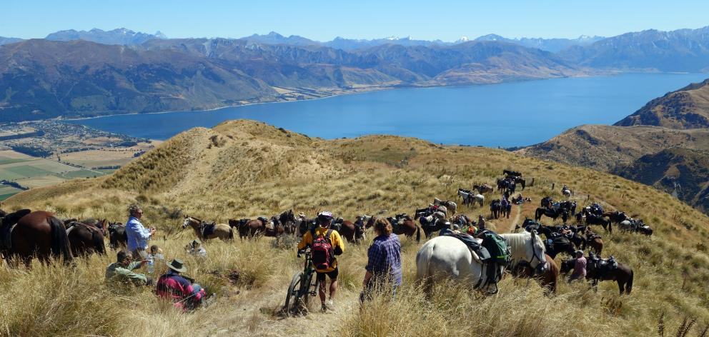 A bike rider threads through lunching horse-riders on the Grandview Doc track high above our destination, Hawea Flat. Photos: John Fridd