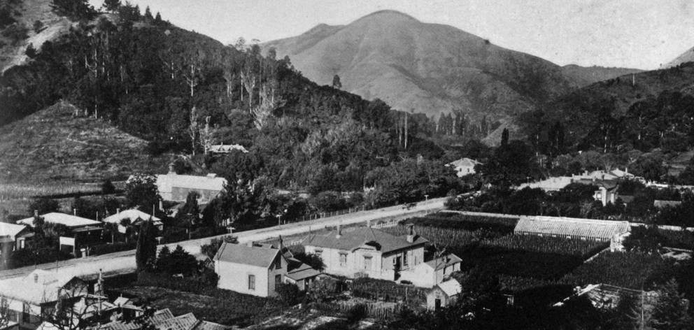 The Maitai Valley, Nelson. - Otago Witness, 19.3.1919.