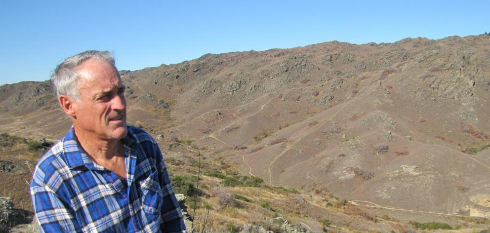 Central Otago Wilding Conifer Control Group project manager Phil Murray looks over hills on...