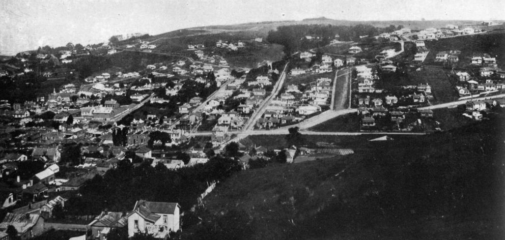 A section of Caversham - a suburb now amalgamated with Dunedin City. - Otago Witness, 30.4.1919