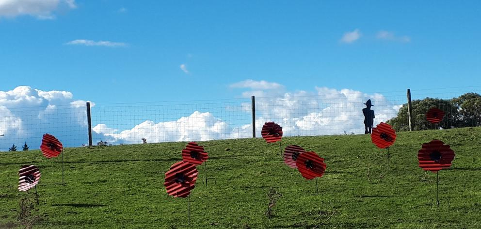 Richard Simpson will decorate one of his roadside paddocks at Chatto Creek with large poppy ornaments for Anzac Day. Photo: Richard Simpson
