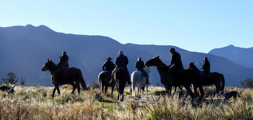 A team of riders heads out on the morning muster.PHOTO: STEPHEN JAQUIERY