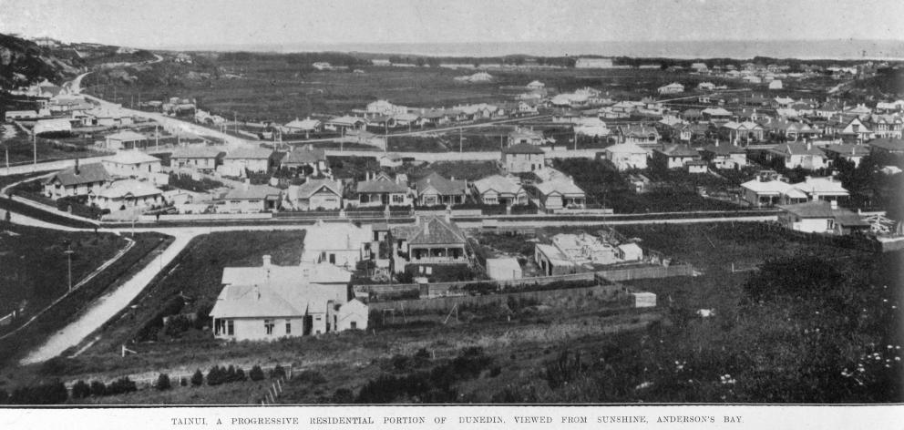 Tainui是达尼丁的一个进步住宅区,从阳光,安德森湾观看。 -...