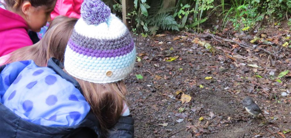 Children watch with fascination as a robin hops around looking for food, oblivious to the crowds...