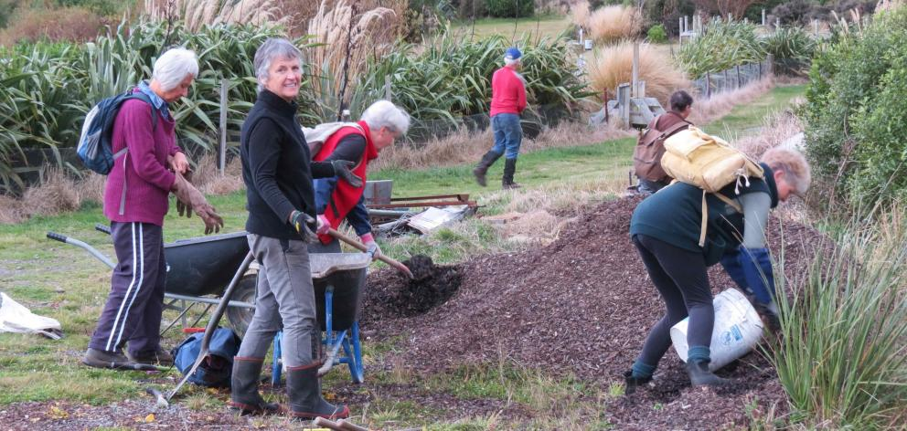 Woodchips will help keep the weeds down on a freshly weeded rockery. PHOTO: ALYTH GRANT