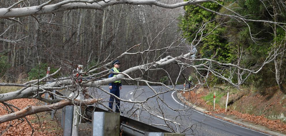Police control traffic after a tree came down blocking one lane on Three Mile Hill in Dunedin on...