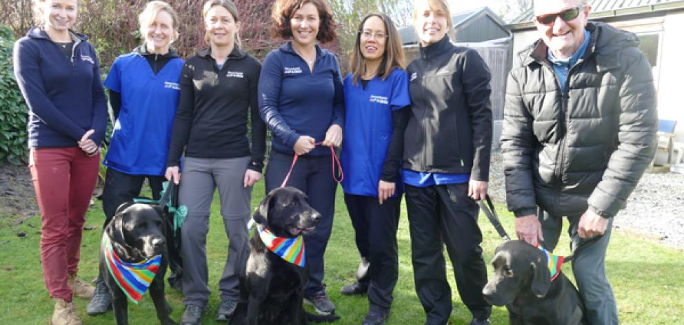 Argus with owner Dave Ness, right, and vet Rachel Burt, third from the left, with donor dogs and vet staff. Photo: Supplied