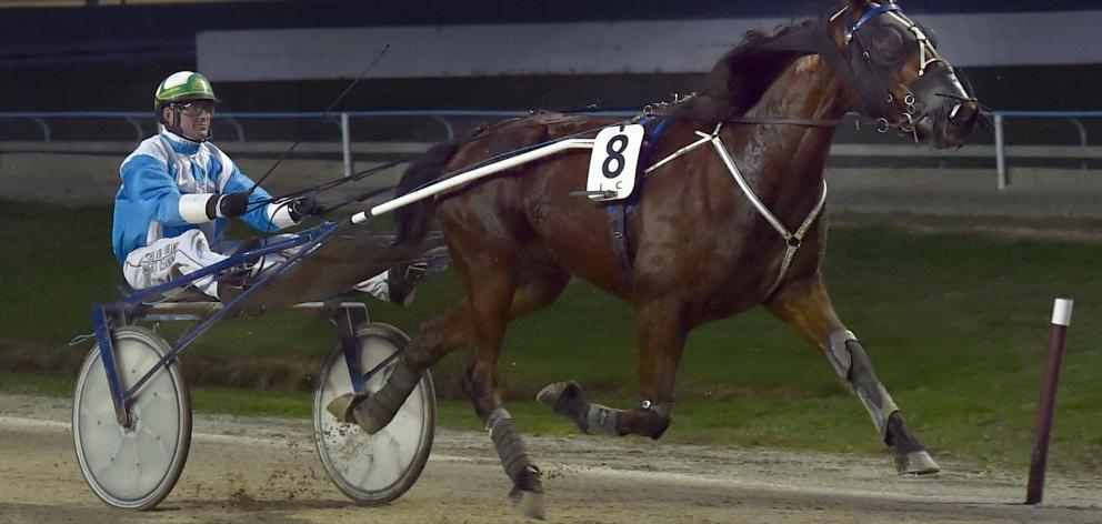 Havehorsewilltravel coasts to the finish line for reinsman Blair Orange in the opening trot at...