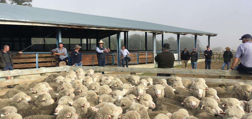 Whenever Mackenzie Country farmers get together, tenure review is often the subject of discussion. Photo: Chris Tobin