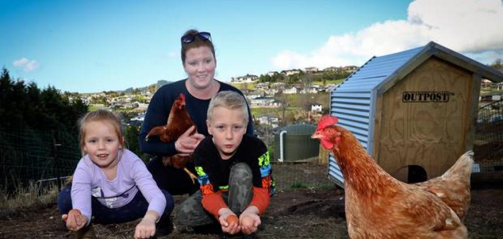 Lorilee de Jong and her children Maisy, 5, and Noah, 8, have 10 free-range chickens on their property and sell their eggs to the community. Photo: NZME.