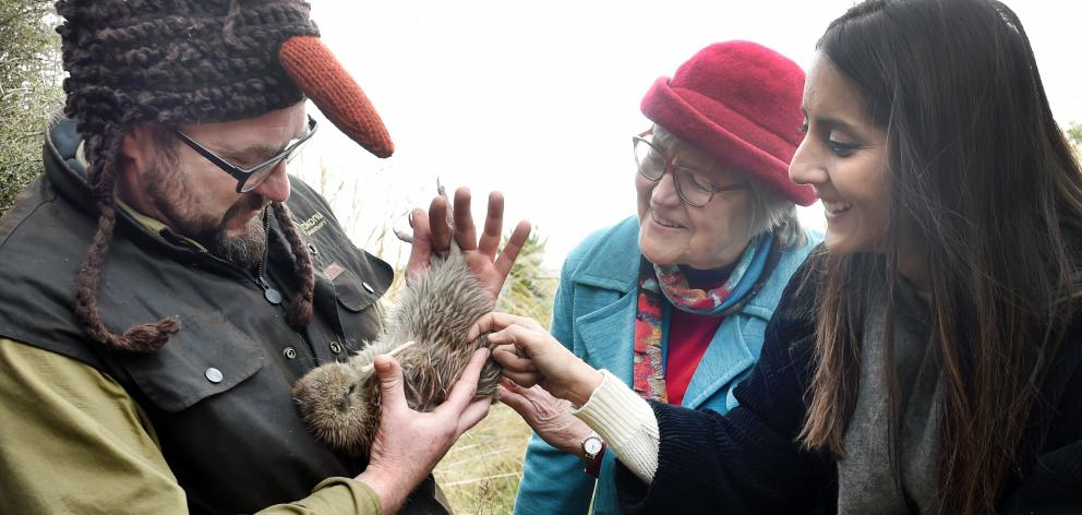 Conservation Minister Eugenie Sage meets a rare Haast tokoeka  with Orokonui Ecosanctuary...