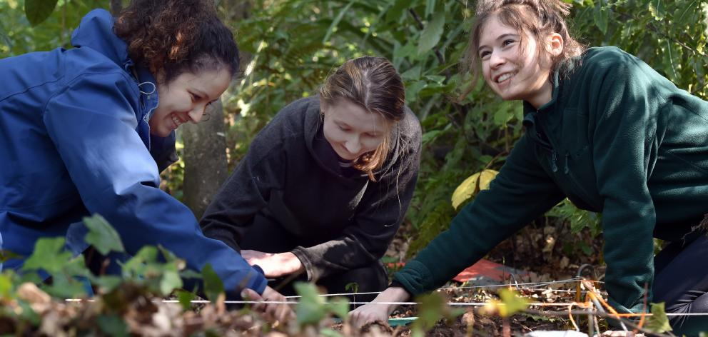 University of Otago students (from left) Natalia Lopes (21), Isabelle Evans (19) and Fleur Neill ...