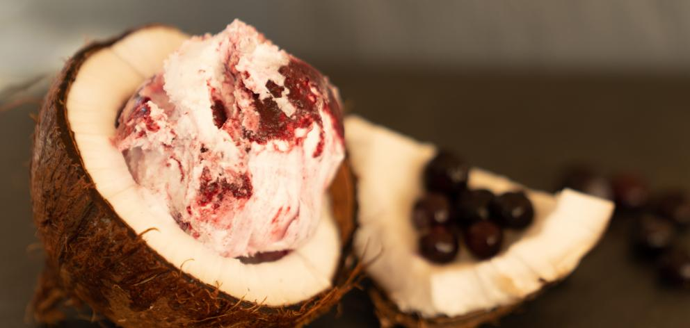 Blackcurrant and coconut gelato by Wanaka's Pure NZ, which last year won the non-dairy award. Photo: Supplied