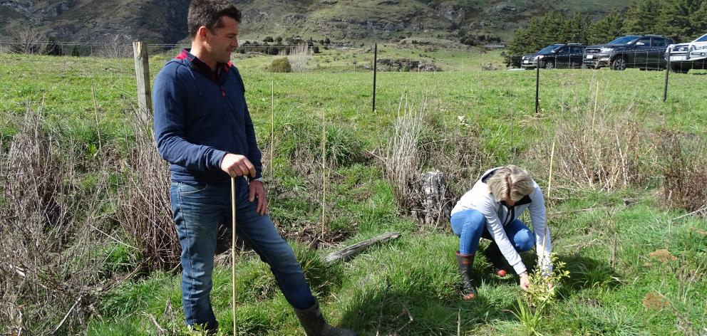 Alpha Burn owners Duncan and Allannah McRae finding time to plant natives beside Alpha Burn creek on their 24/7 beef, lamb and deer high country station. Photo: Kerrie Waterworth