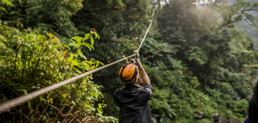 Man on zip wire in forest. Photo: Getty Images