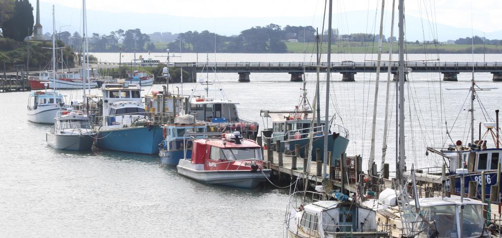 Only one of eight shellfish gathering sites in Southland tested in a recent study was considered safe for food gathering. The Jacobs River Estuary in Riverton is not that one. Photo: Laura Smith