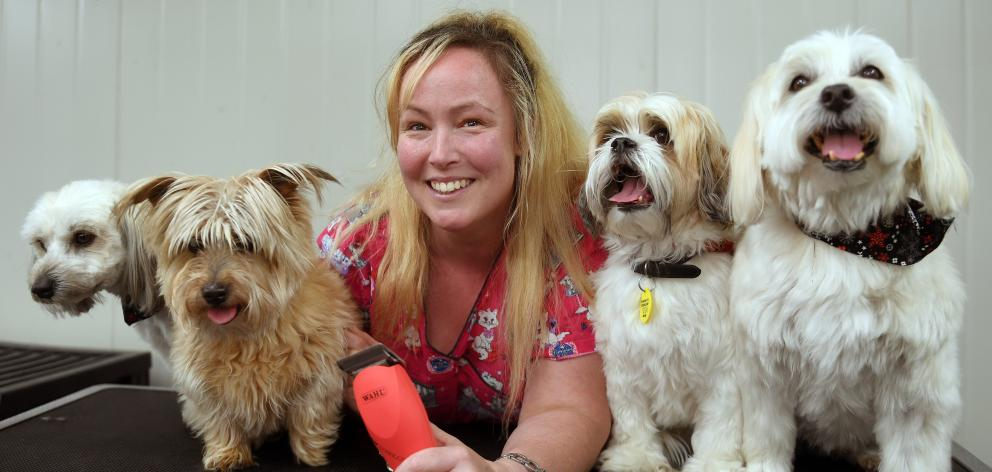 Mudpuppy owner Kim Thom, with (from left) Bear, Brodie, Barron and Hudson, is trying to keep up with demand as pet owners scramble to get their animals groomed for summer. Photo: Stephen Jaquiery