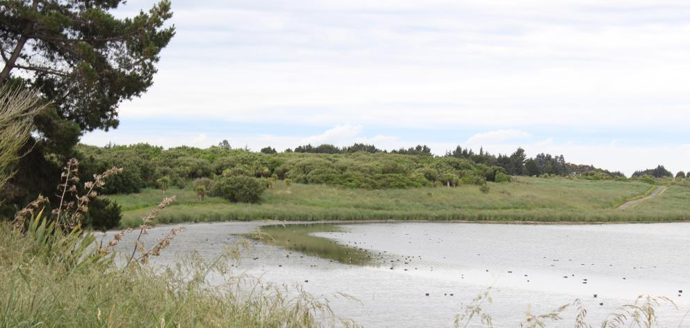 New River Estuary locals have concerns about chemical and bacterial contamination at the site of...